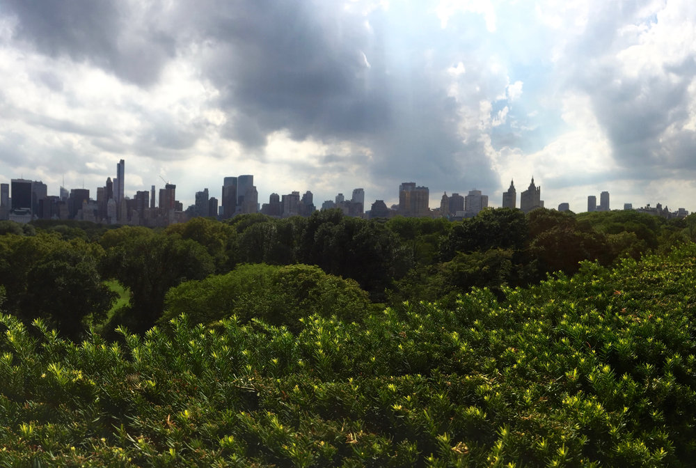 View from the Metropolitan Museum of Art