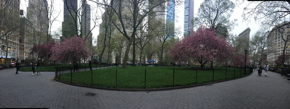 Madison Square Park, NYC 2017 panorama