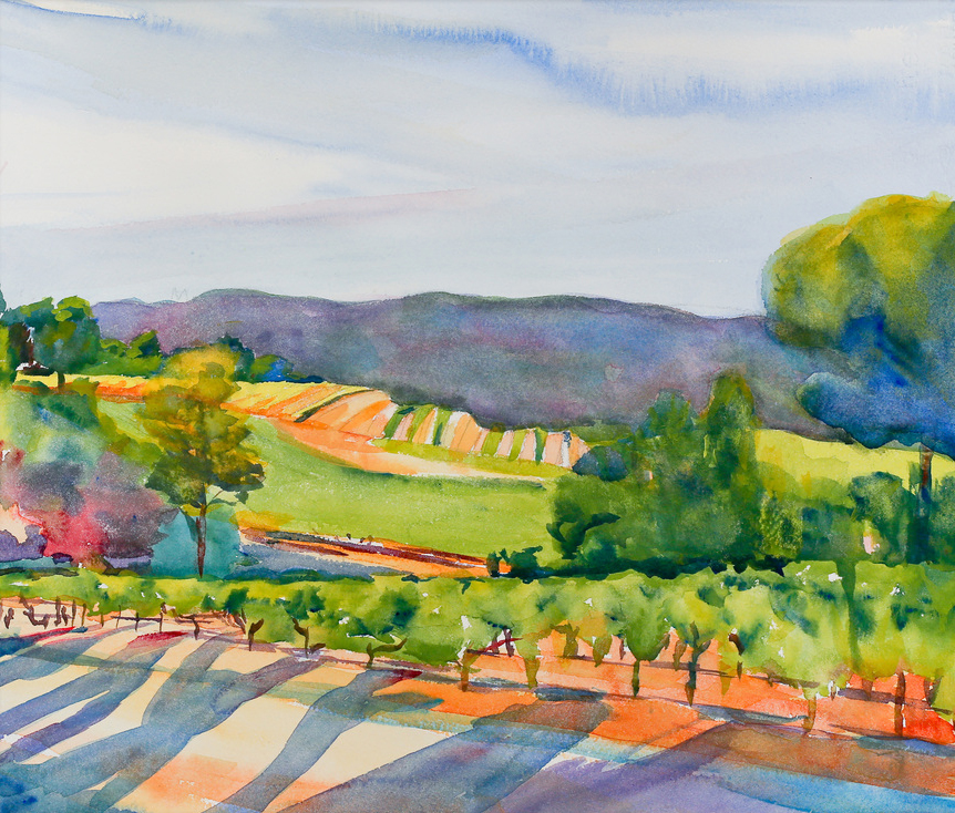 Vineyards at Dusk Behind Les Bassacs