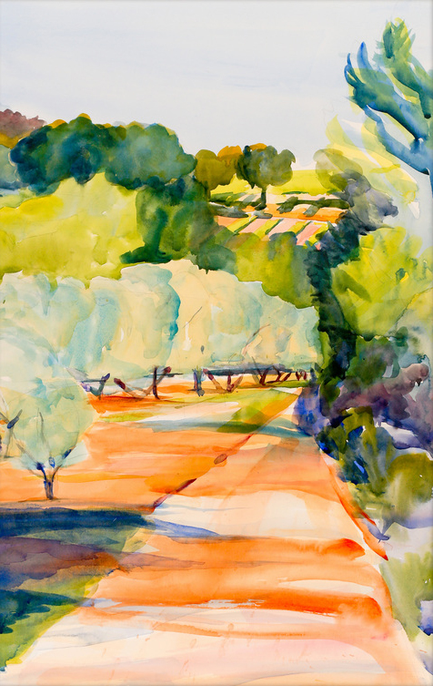 Olive Groves behind Les Bassacs, 2013