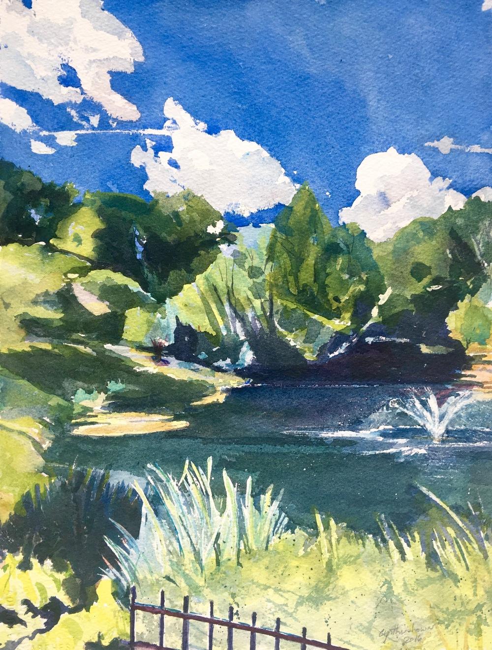 Hillandale Pond, (c) 2016