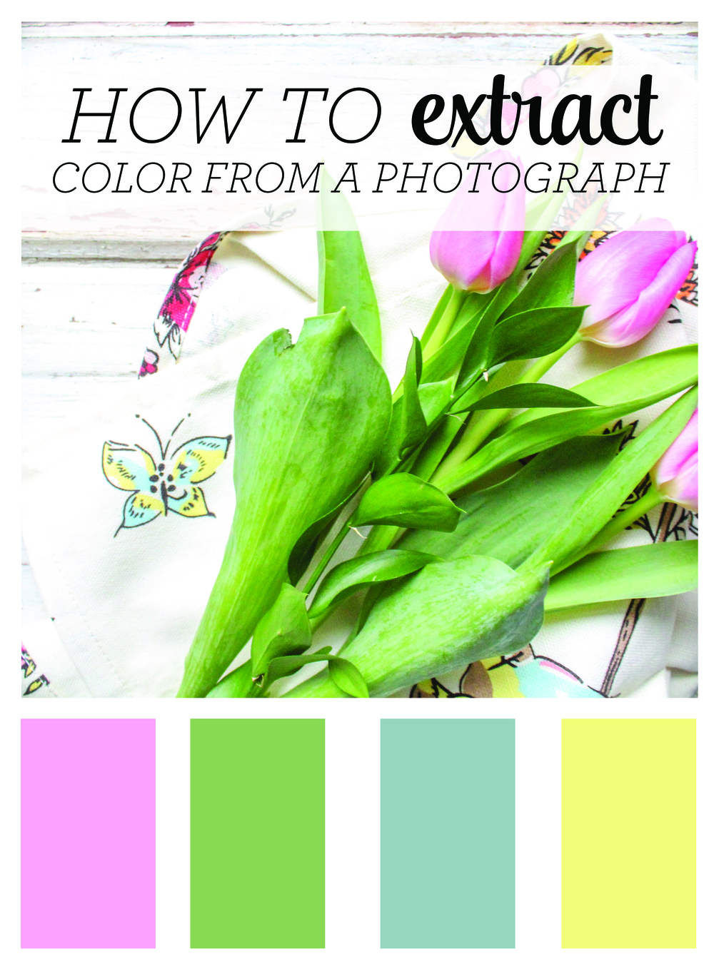 extract_color_from_photography_color_pallette.jpg