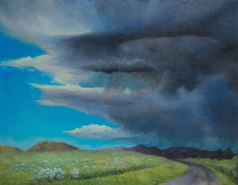 """Storm at Badger Pass""  By Emily Boutilier"