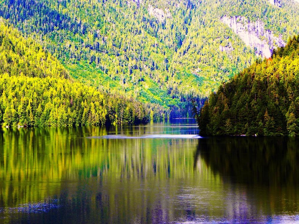 """Alaskan Reflection""by Tisha Clinkenbeard"