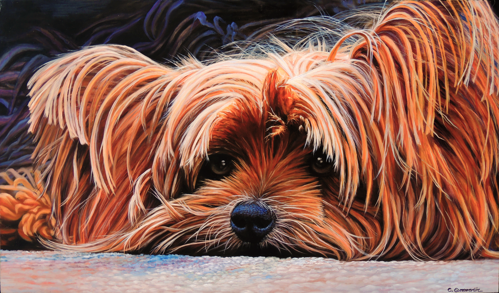 Yorkie by Carol Summerlin