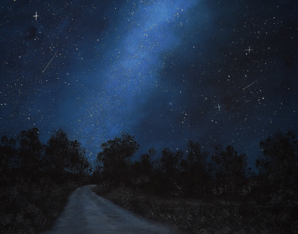 NIght Sky Trail by Colleen Stevens