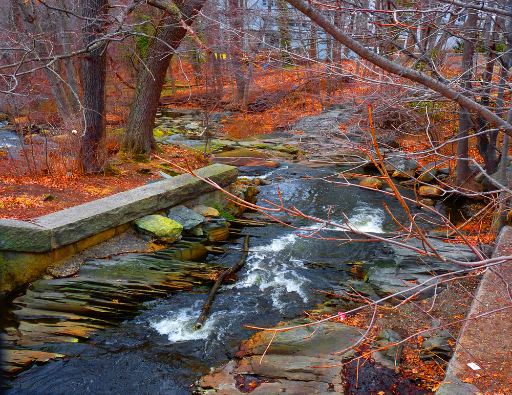 """Autumn Stream"" by Marcia Berg Haskell"