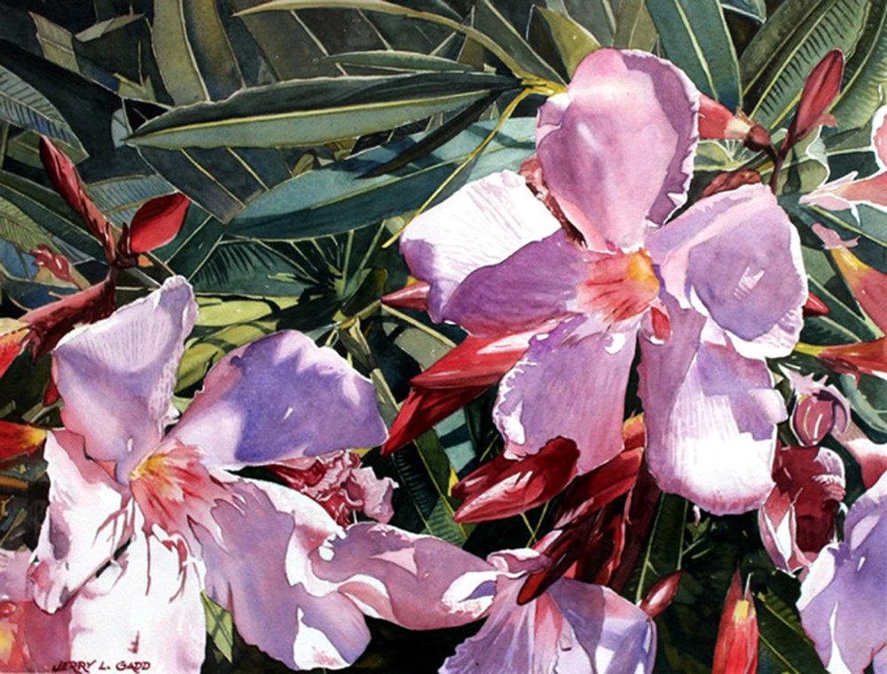 20496926-3. Floral Fanfare.jpg