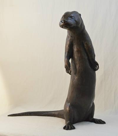 River Otter jpeg 1mb 72dpi.jpg