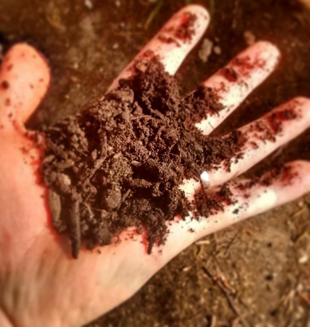 We turn it into nutrient-rich soil