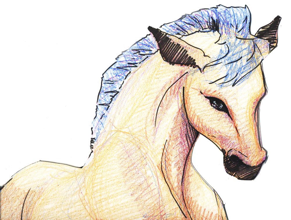 HORSE_erinfilson.jpg