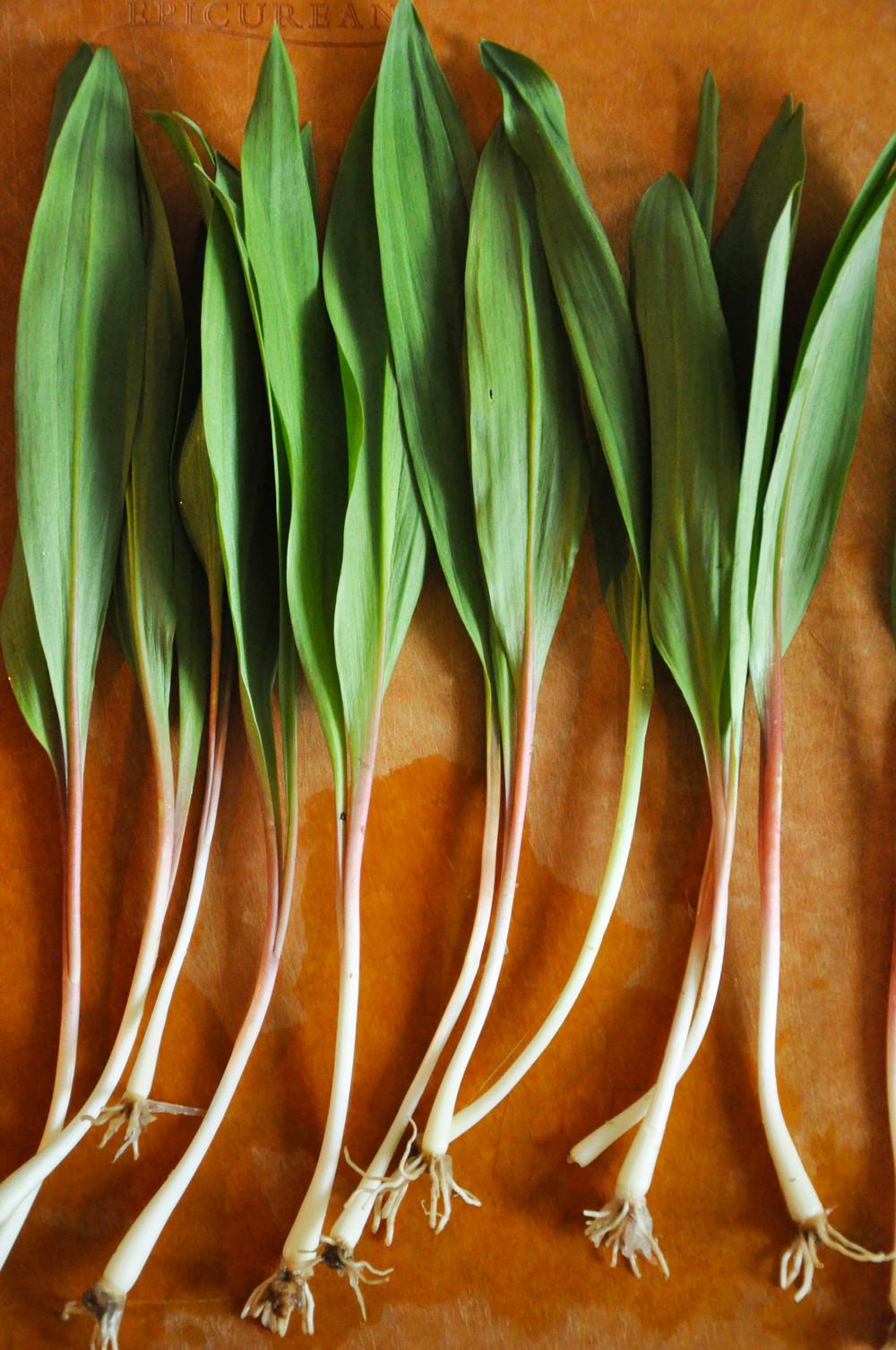 pea_asparagus_salad2.jpg