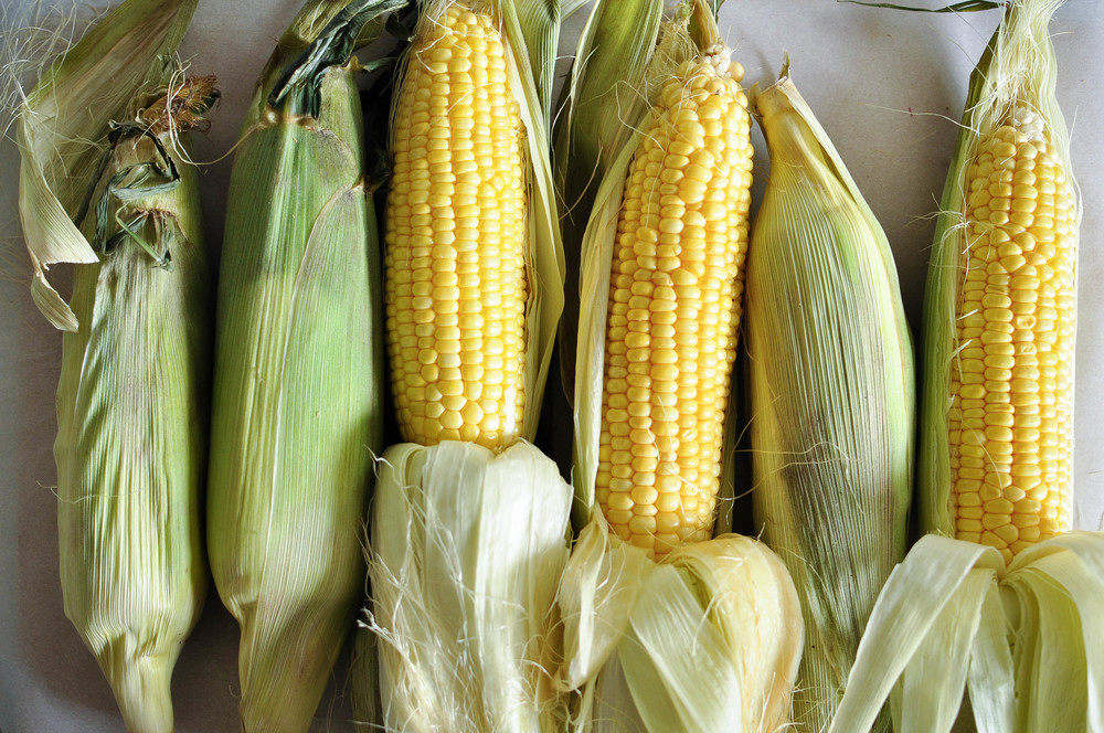 corn_poblano_chowder2.jpg
