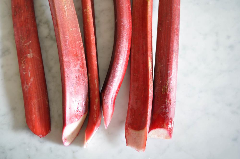 rhubarb_sorbet2.jpg