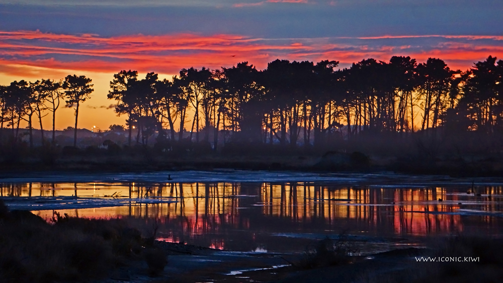 Sunrise over the marshes, Christchurch, New Zealand