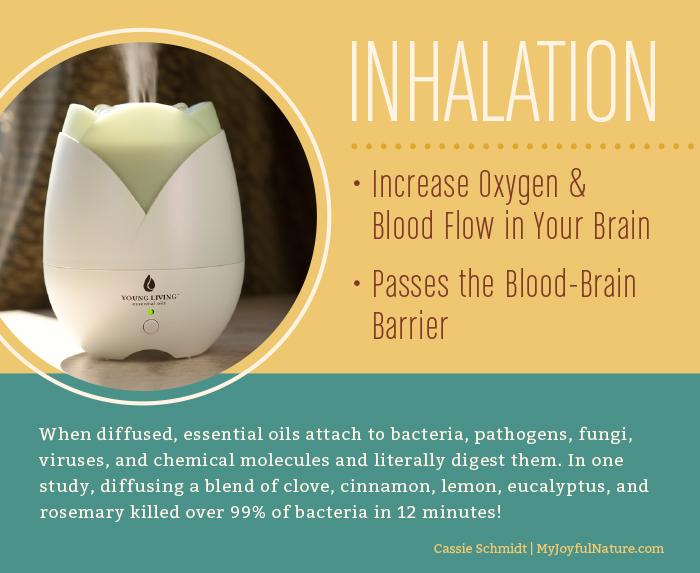 inhalation.jpg