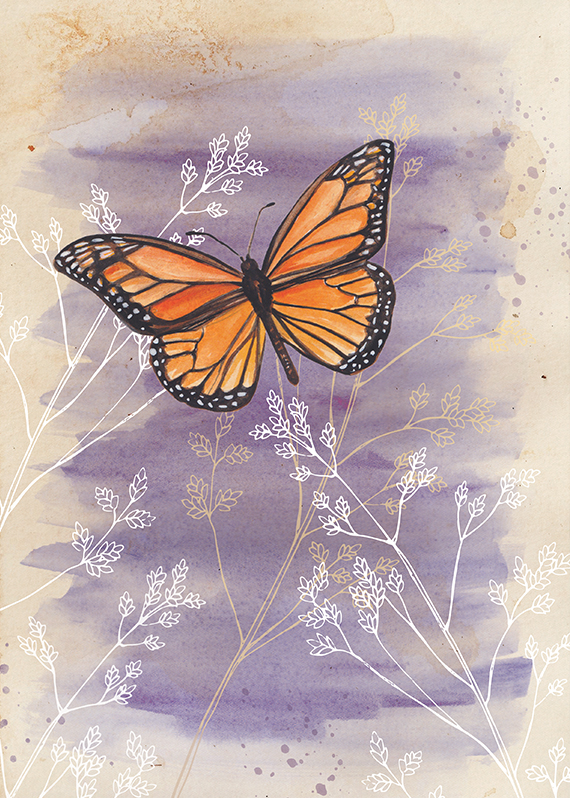 One of my prints in the store,  Monarch Butterfly.