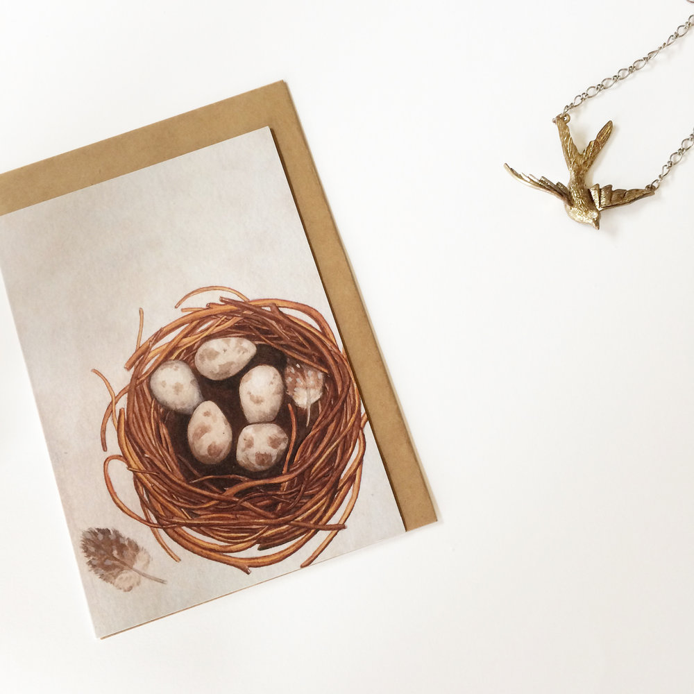 Nest  - Blank Greeting Card - A6 (148 x 105 mm or 5.83 x 4.13 inches) when closed - Professionally printed on a 100% recycled card stock.