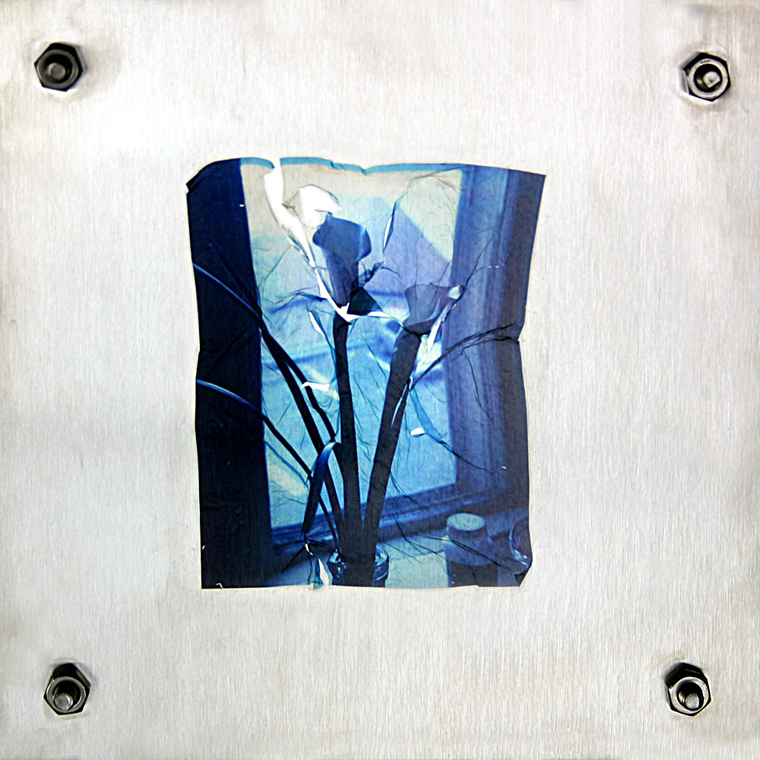 Blue Lillies on Steel: 2003