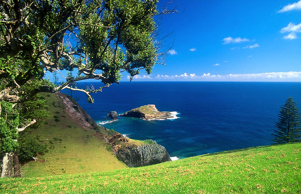 Norfolk_Island_Bird_Rock_Steve_Daggar.jpg