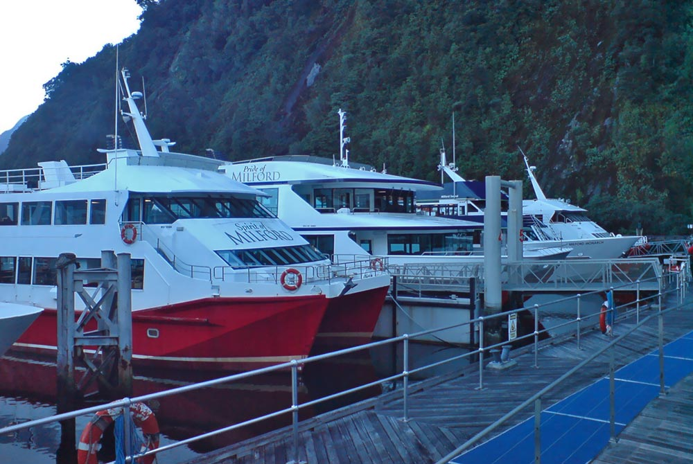 Milford_Sound_Tour_Boats.jpg