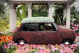 Chelsea Flower Show Mini