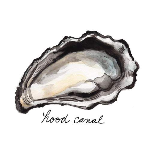 Oyster Illustration for The Local Palate June/July 2016 Issue