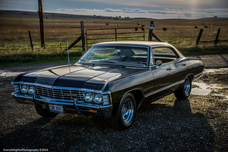 impala+poster+11x16.5+day+exclusive.jpg