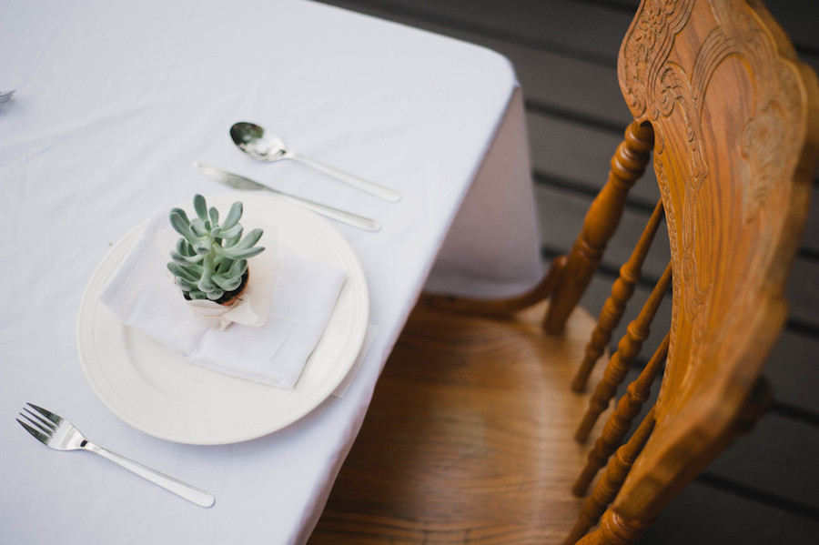 Succulent table setting that thoughtfully doubled as a take-home gift from Audra.