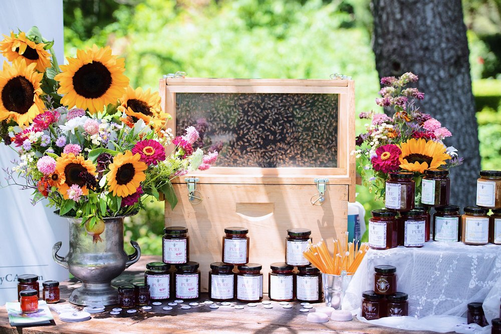 bees_pure_honey