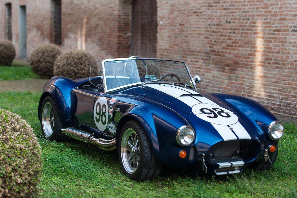 Cobra-4_1.jpg