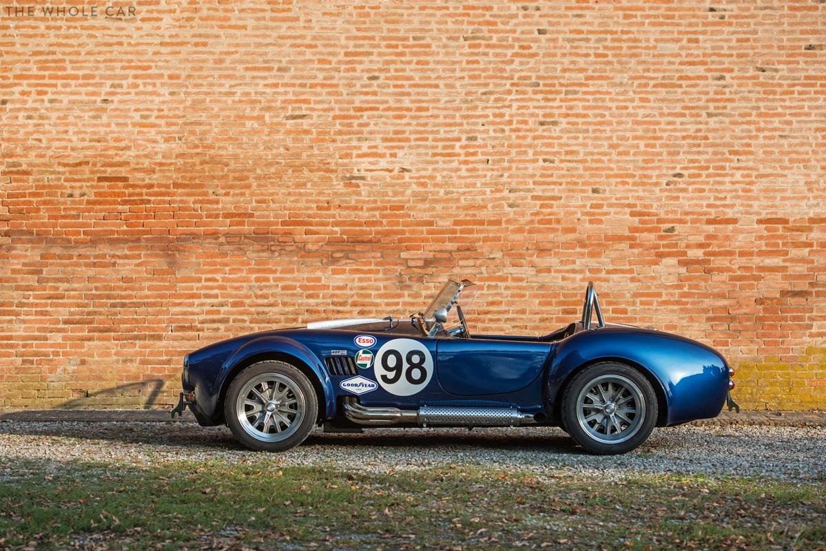 Cobra-8_1.jpg