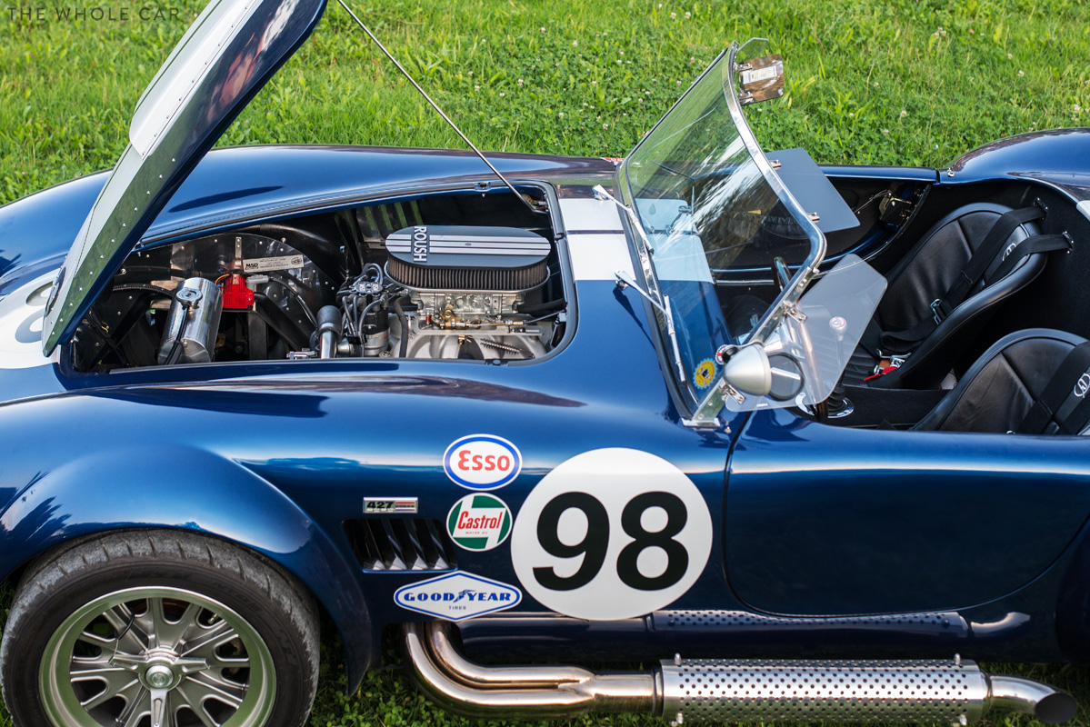 Cobra-10_1.jpg
