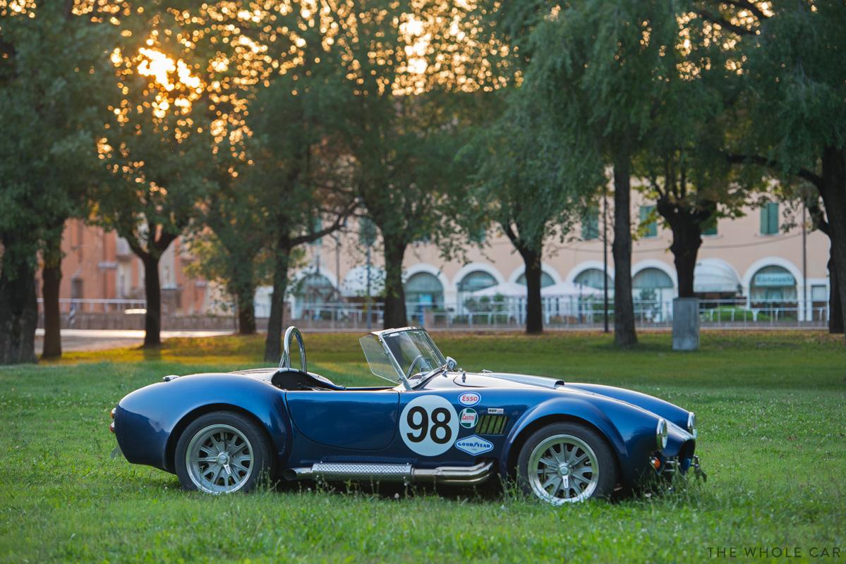 Cobra-12_1.jpg
