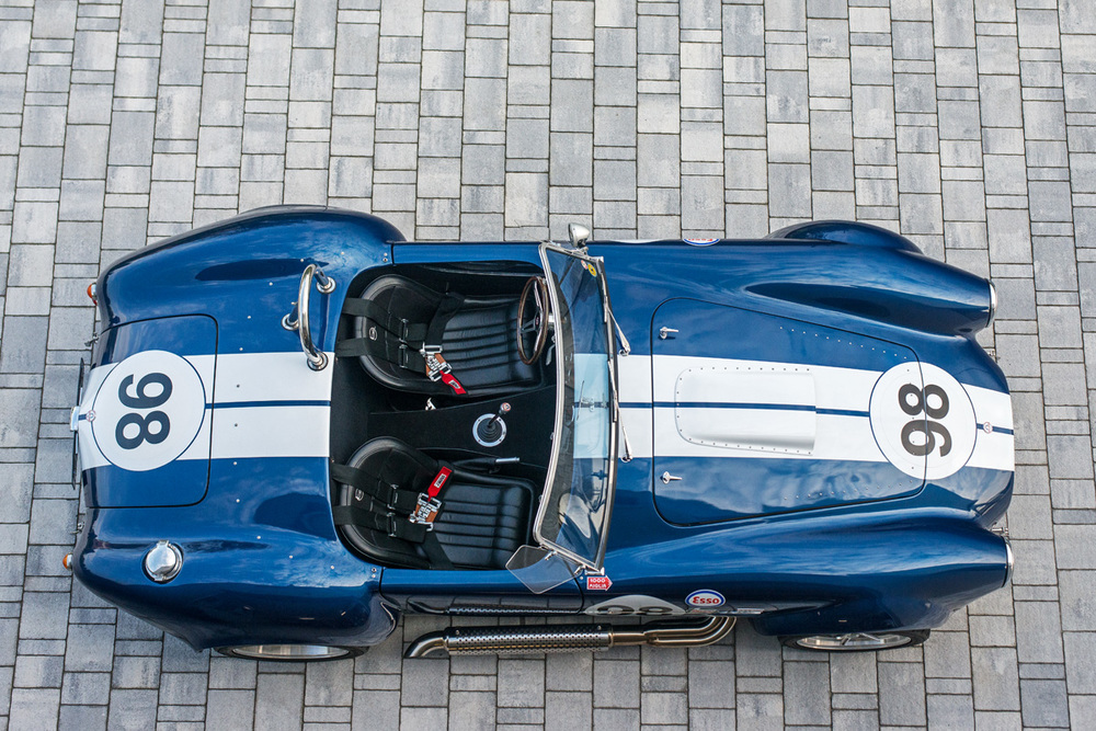 Cobra-1.jpg