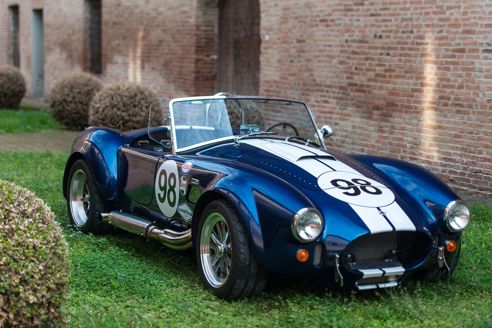 Cobra-4.jpg