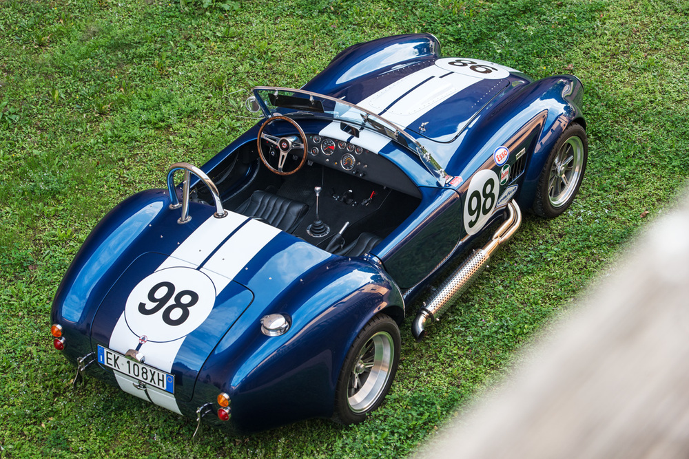 Cobra-5.jpg