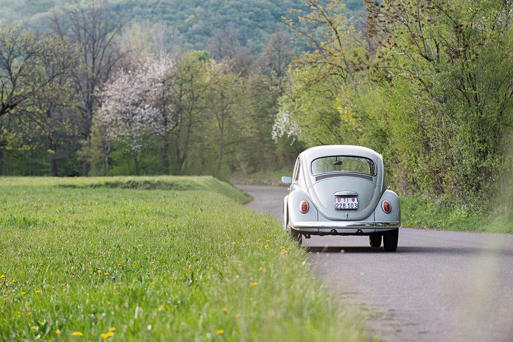 VW Beetle-7.jpg