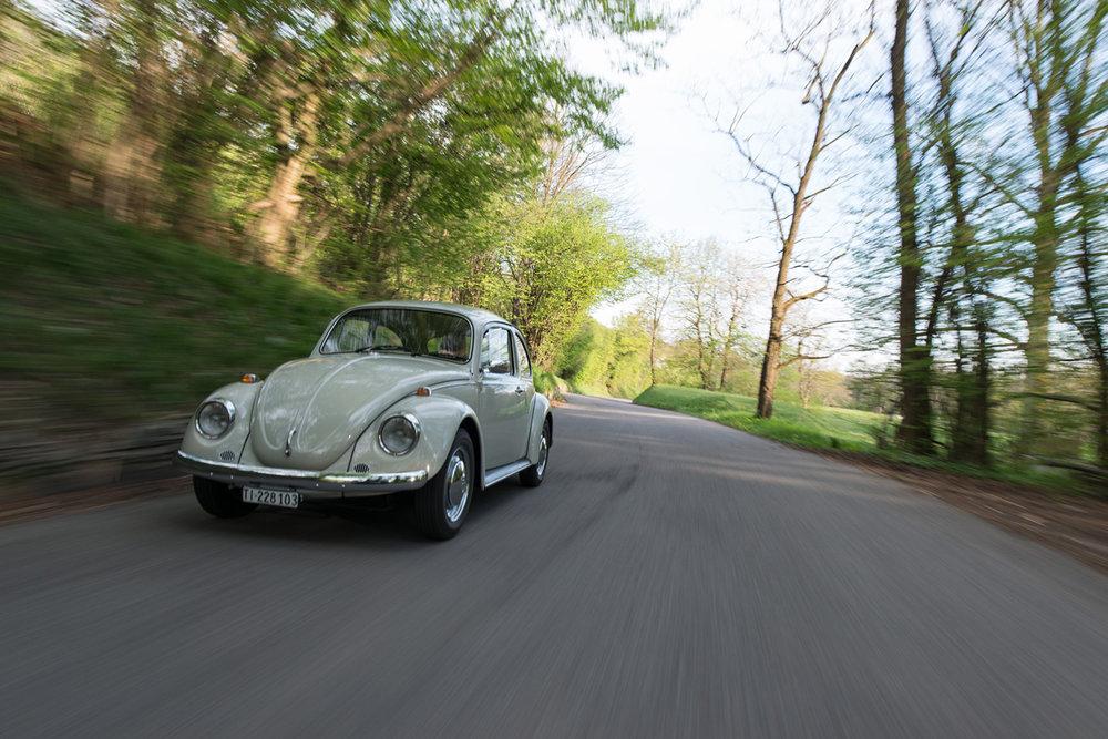 VW Beetle-12.jpg