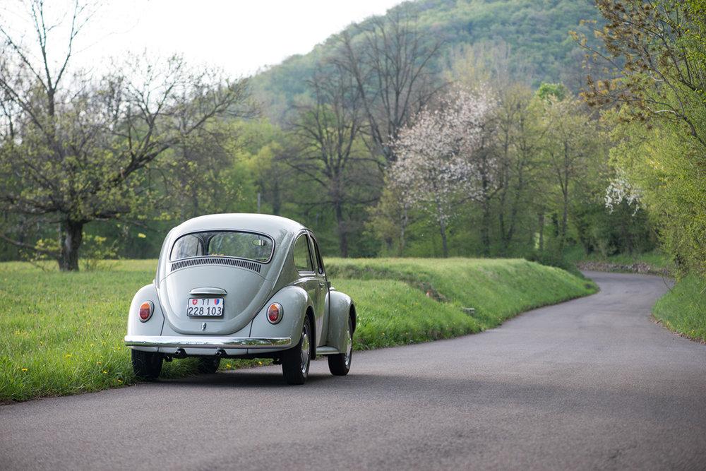 VW Beetle-16.jpg