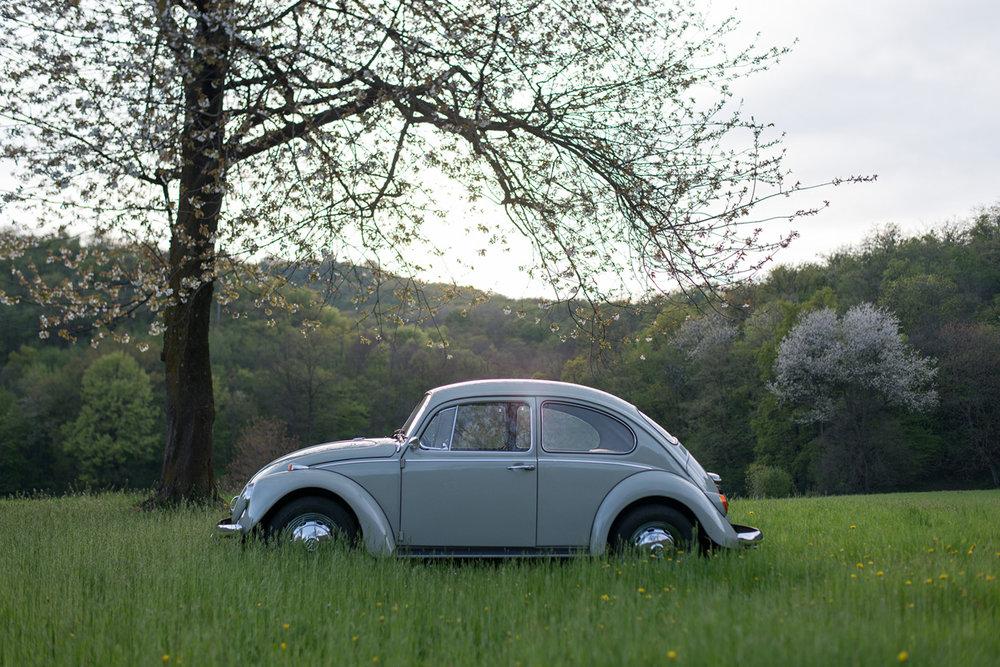 VW Beetle-26.jpg