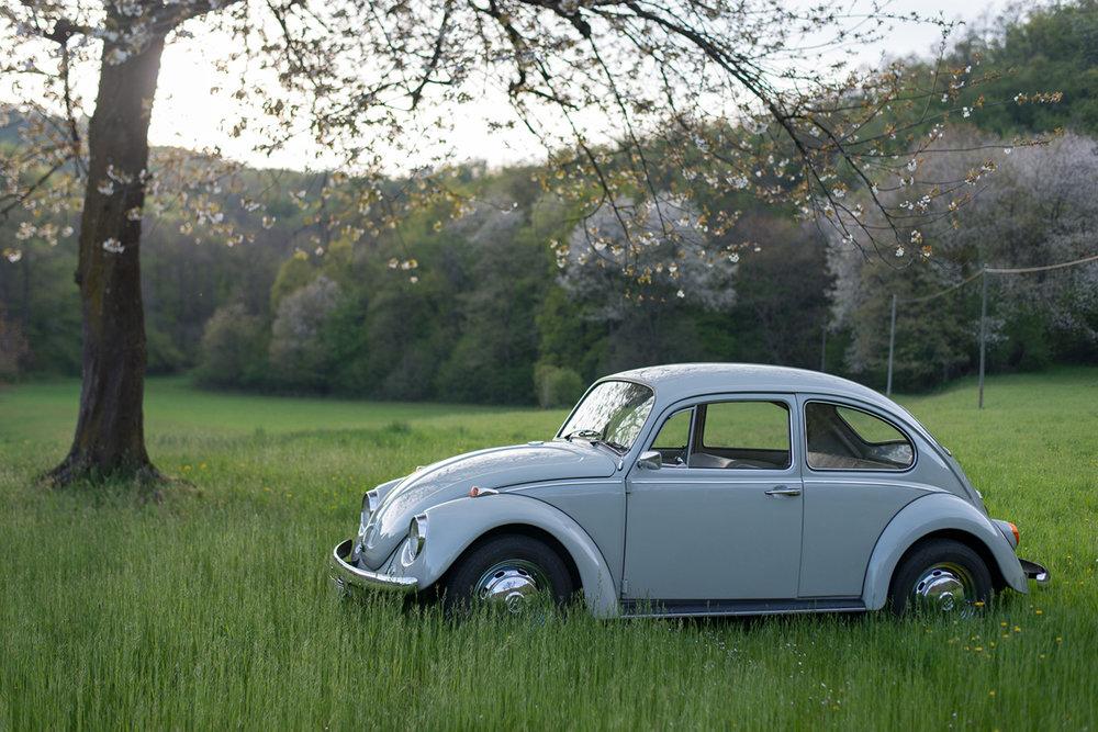 VW Beetle-27.jpg