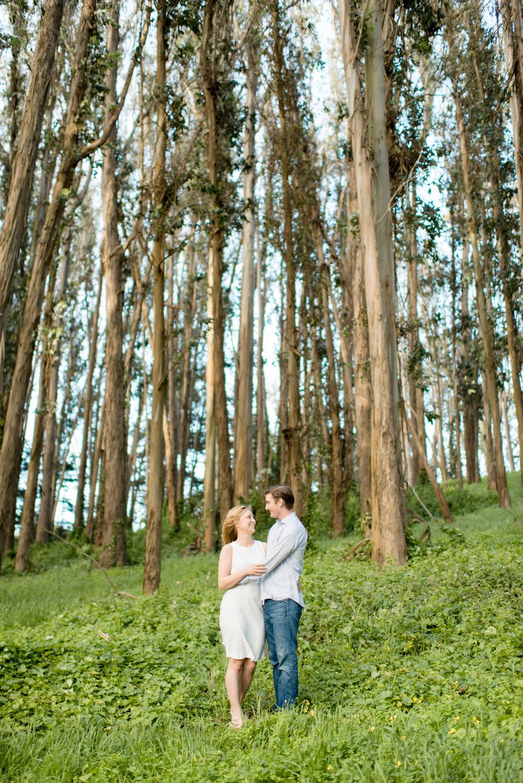 Presidio Forest