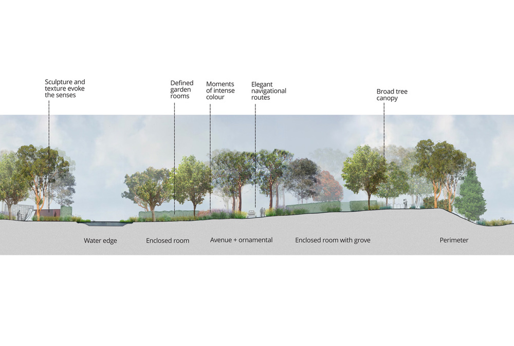 Cross-section of cemetery planting design