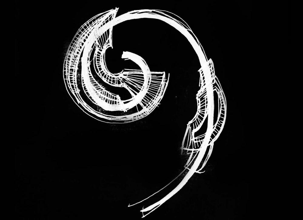 spiraldev43BW.jpg