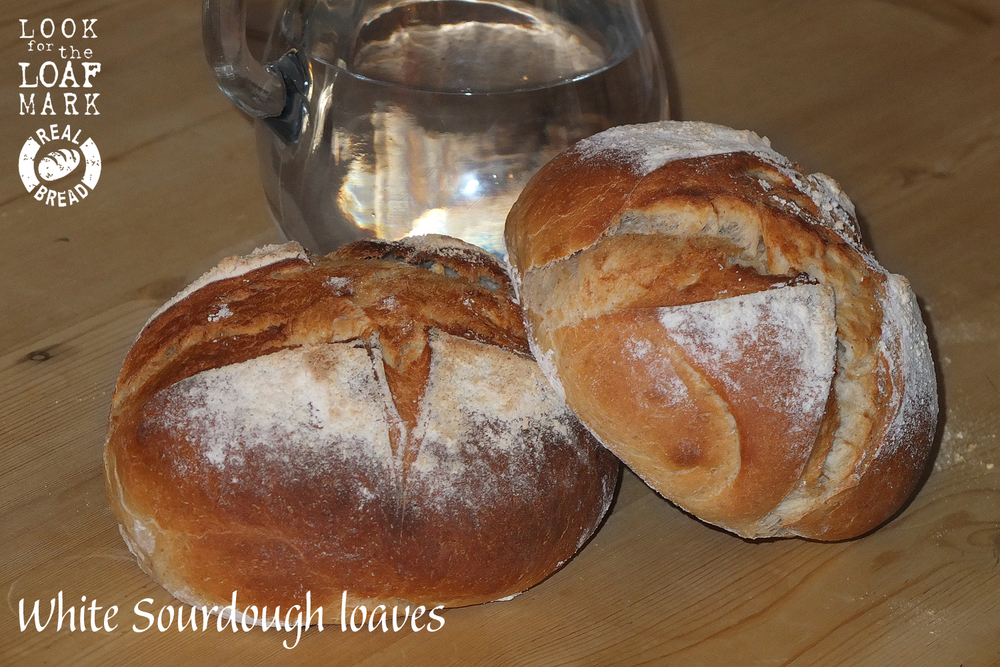 2 Small sourdoughs.jpg