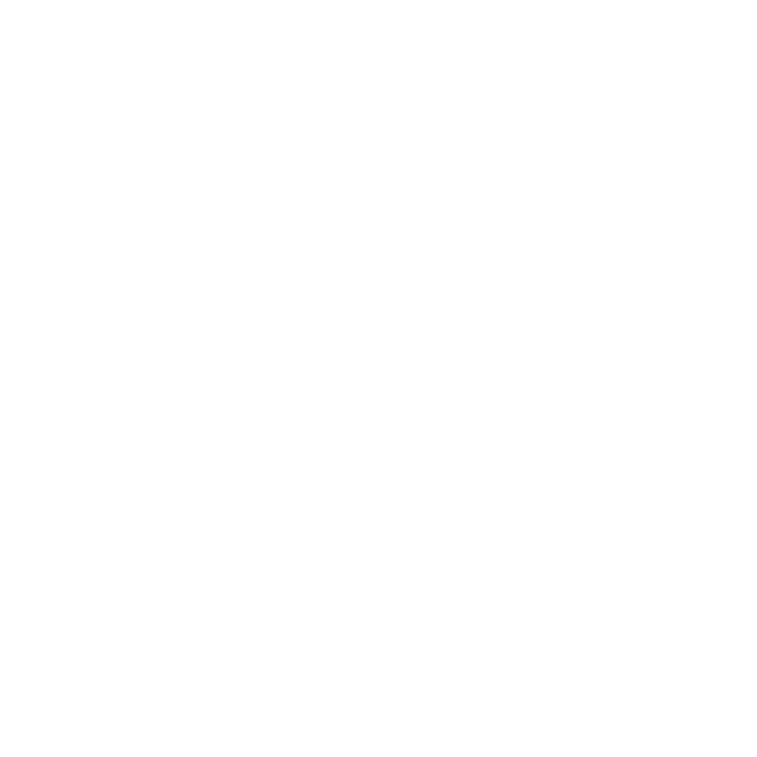 SCARLETT ENTERPRISES