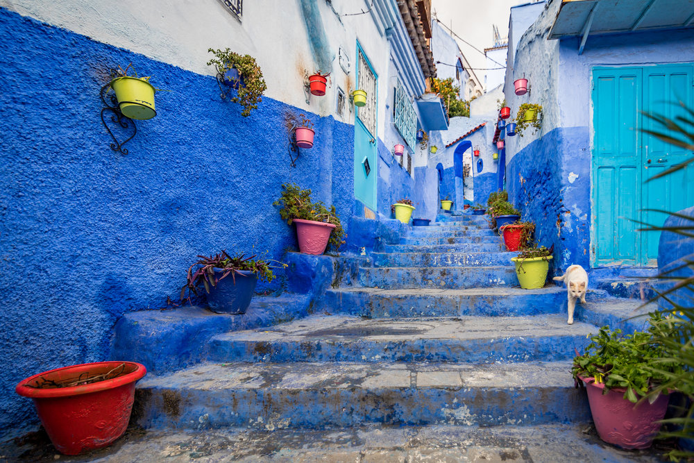 Chefchaouen is a small village in northen Morocco, near the Rif Mountains. Almost everything in sight is painted blue.