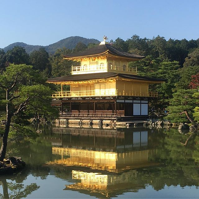 Reflected gold.  #kyoto #japan #serene #autumn #inspiration #travel #explore #adventure #zen #temple #architecture #reflection #handmade #accessories