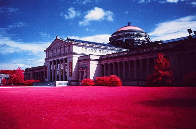 Chicago's Museum of Science and Industry. This building is mostly just three stories of buttons that are really fun to press. . #MOSAID #MuseumOfScienceAndIndustry #Science #Architecture #Chicago #SouthSide #HydePark #WindyCity . #Aerochrome #Aerochrome400 #Kodak #KodakAerochrome #EIR #KodakEIR #IR #Infrared #ColorInfrared #ExpiredFilm #Film #FilmIsNotDead #ShootFilm #35mm #FPP #FilmPhotographyProject #FPPInfrachrome #Infrachrome #ColorInfraredFilm #InfraredFilm